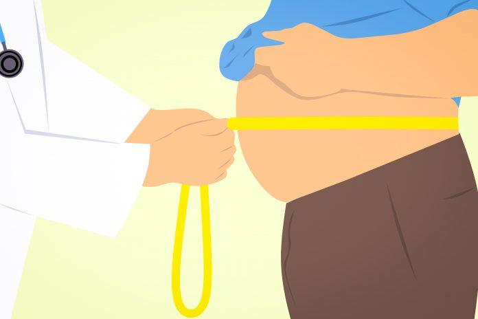 perdre du poids compléments alimentaires