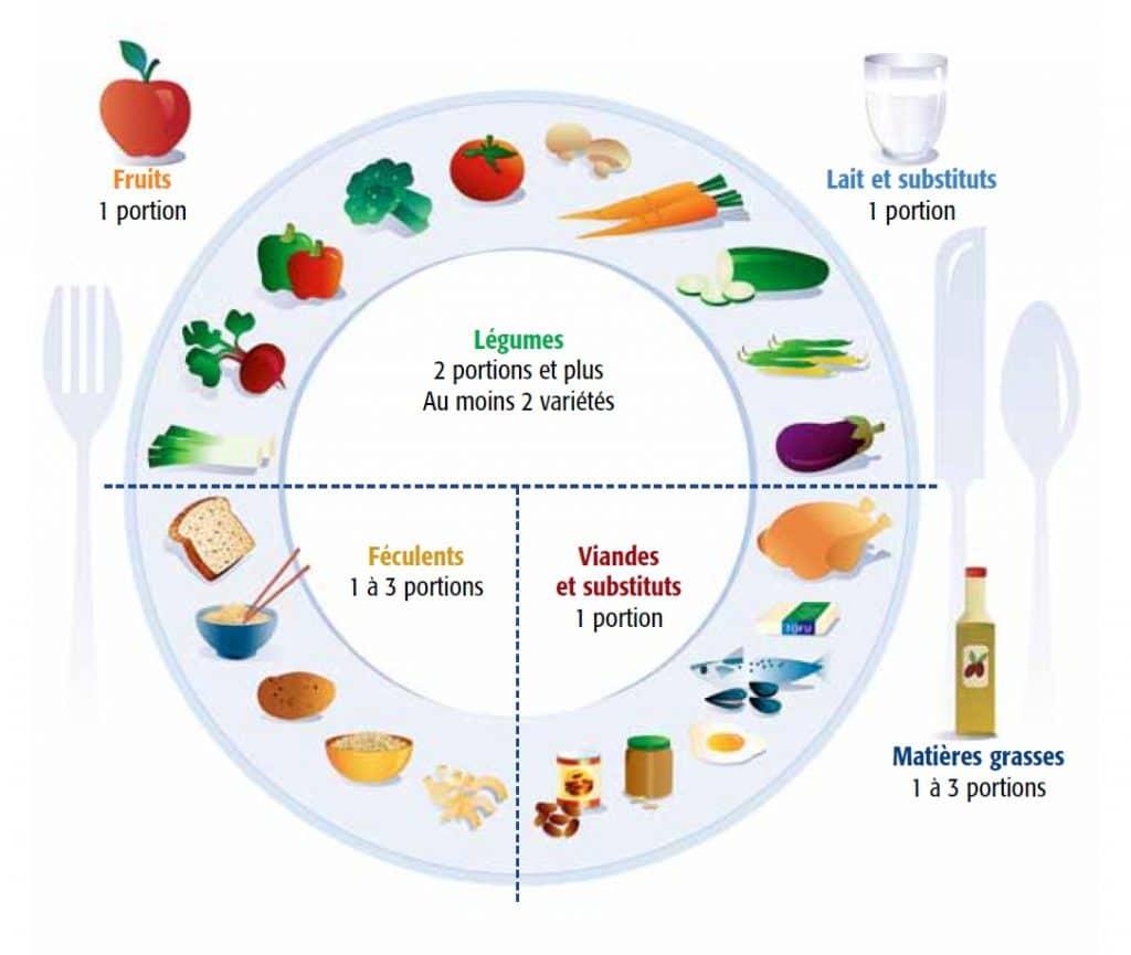 assiette équilibrée modèle de l'équilibre alimentaire