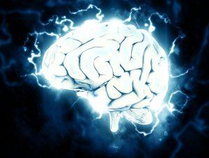 cerveau en activité métabolisme