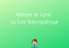 Maladie de Lyme : cure naturopathique