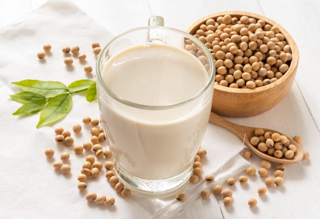 produit laitier lait végétal