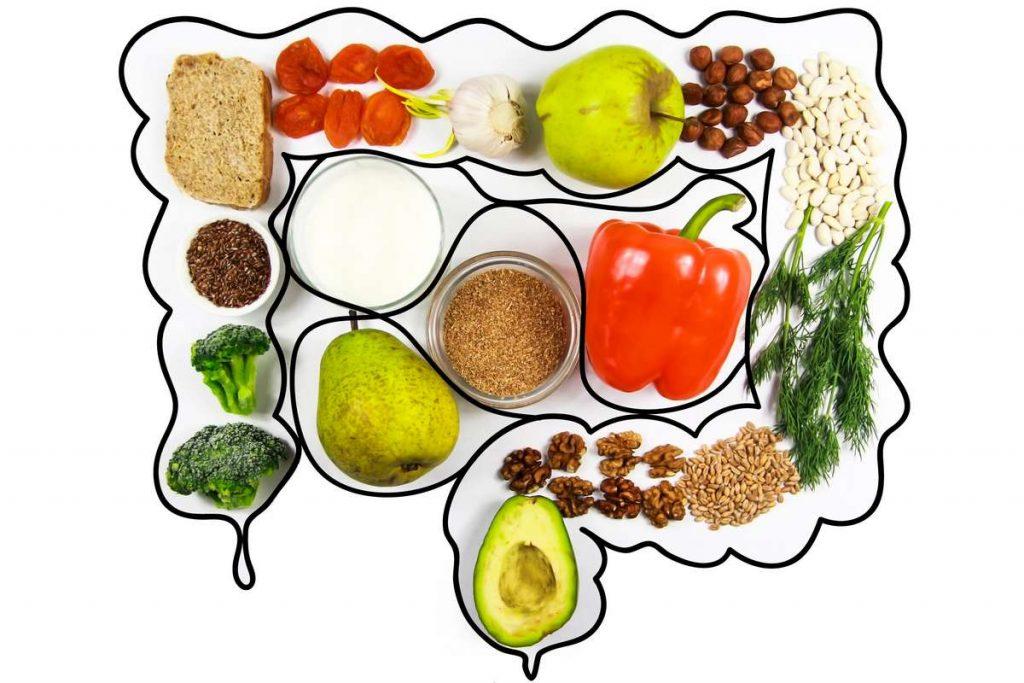 Infographie aliments bons pour l'intestin