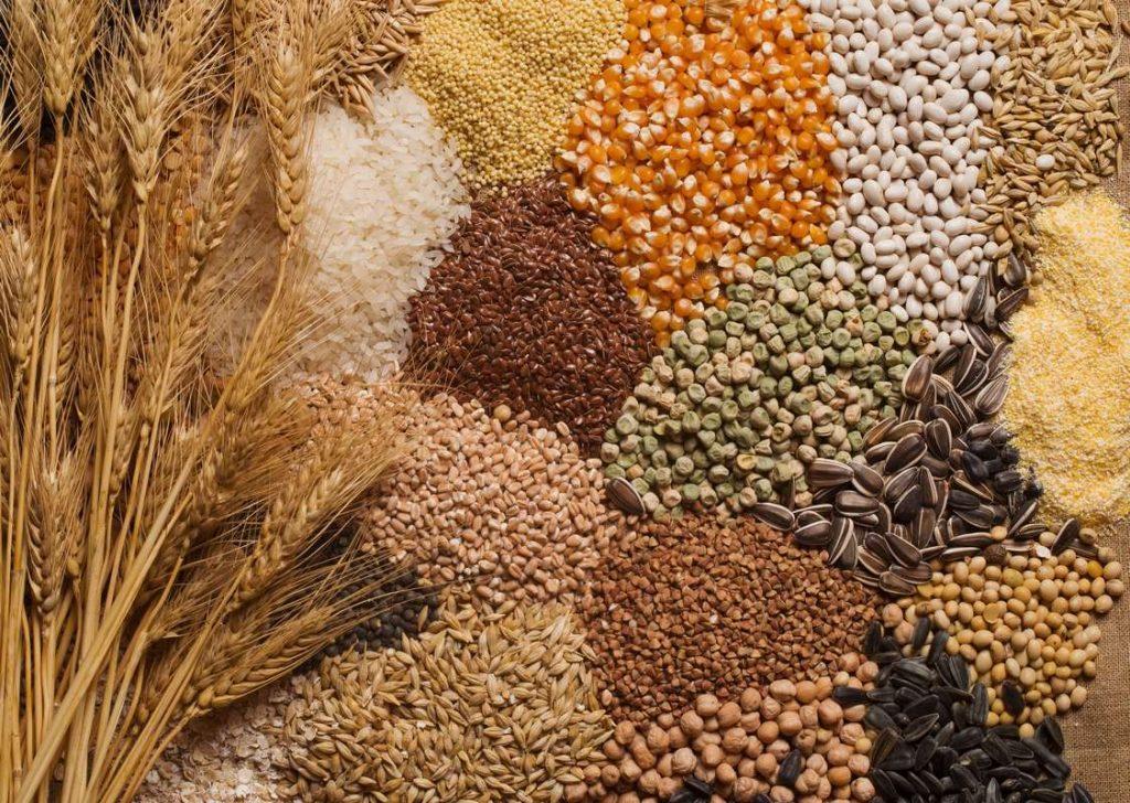 diverses céréales